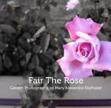 Fair the Rose