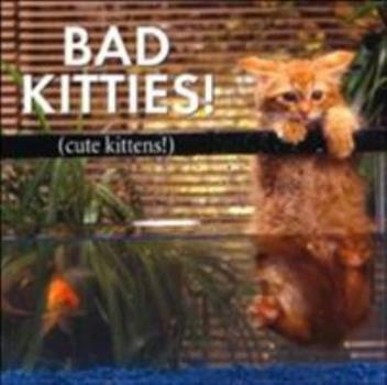 Bad Kitties: Celebrating Good Times And Bad Behavior 1595431519 Book Cover