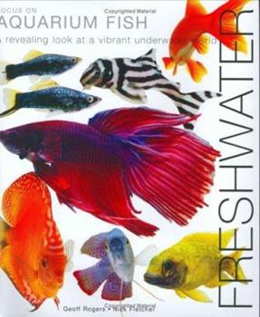 Focus on Aquarium Fish 1842860828 Book Cover