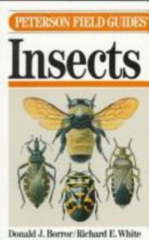 Paperback A Field Guide to the Insects of America North of Mexico Book