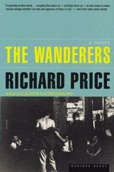 The Wanderers 0140083448 Book Cover