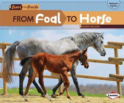From Foal to Horse - Book  of the Start to Finish, Second Series