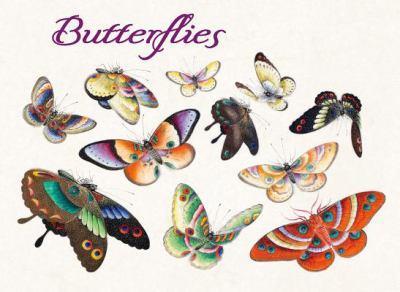 Misc. Supplies Butterflies Boxed Notecard Ass Book