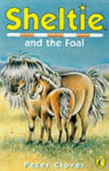 Sheltie and the Foal 0141308036 Book Cover