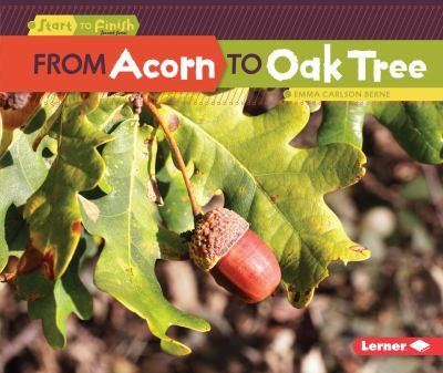 From Acorn to Oak Tree from Acorn to Oak Tree - Book  of the Start to Finish, Second Series