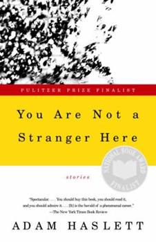 You Are Not a Stranger Here: Stories 0385720726 Book Cover