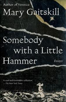 Somebody with a Little Hammer: Essays 0307378225 Book Cover