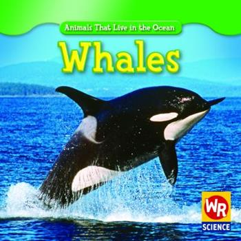 Whales - Book  of the Animals That Live in the Ocean