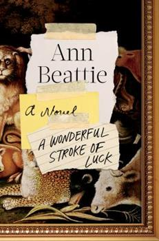 Hardcover A Wonderful Stroke of Luck : A Novel Book