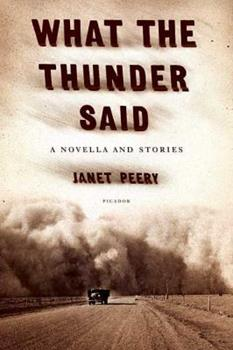 What the Thunder Said: A Novella and Stories 0312252633 Book Cover