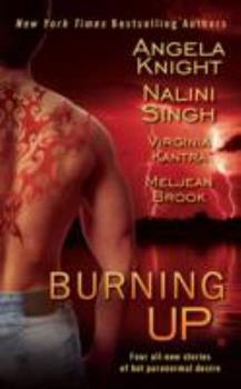 Burning Up 0425235955 Book Cover