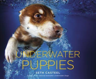 Underwater Puppies 1472209400 Book Cover