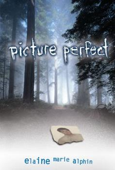 Picture Perfect 0822564688 Book Cover