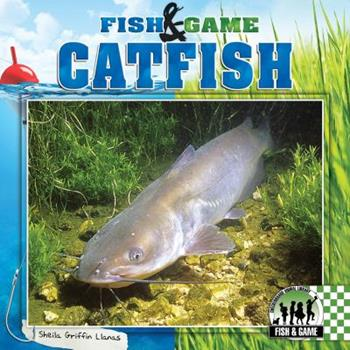 Catfish 1624031064 Book Cover