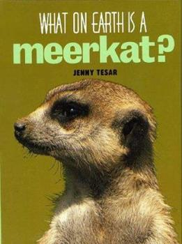 Library Binding What on Earth Is a Meerkat? Book