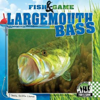 Largemouth Bass 1624031080 Book Cover