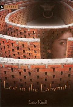 Lost in the Labyrinth 0618394028 Book Cover