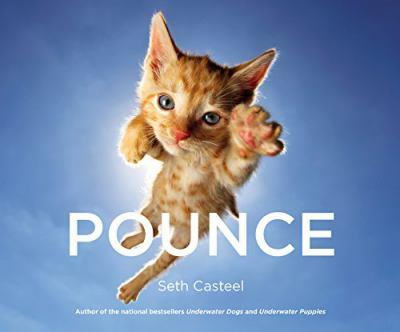 Pounce 0316349224 Book Cover