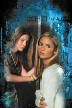 Buffy the Vampire Slayer: False Memories - Book  of the Buffyverse, Buffy The Vampire Slayer Season 5