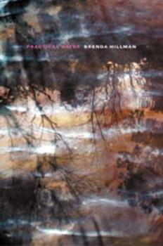 Practical Water (Wesleyan Poetry) 0819569313 Book Cover