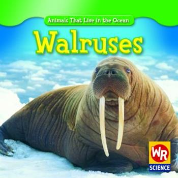 Walruses - Book  of the Animals That Live in the Ocean