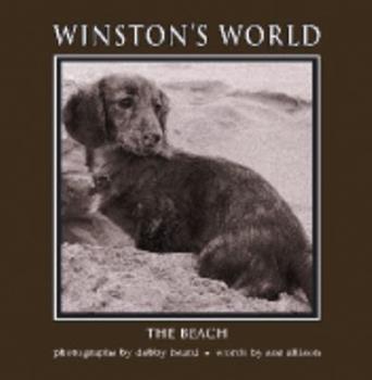Paperback Wintson's World: The Beach Book