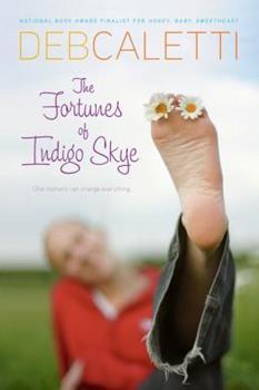 The Fortunes of Indigo Skye 1416910085 Book Cover