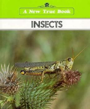 I want to know about Volcanoes/Insects (New True Book) 051601627X Book Cover
