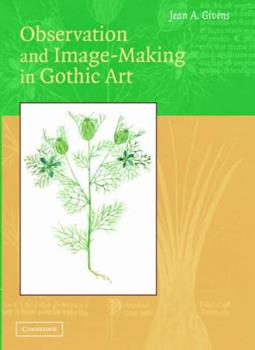 Hardcover Observation and Image-Making in Gothic Art Book