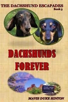 Paperback Dachshunds Forever Book