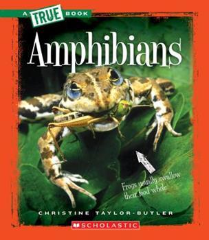 Paperback Amphibians (a True Book: Animal Kingdom) Book