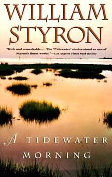 A Tidewater Morning 0679754490 Book Cover