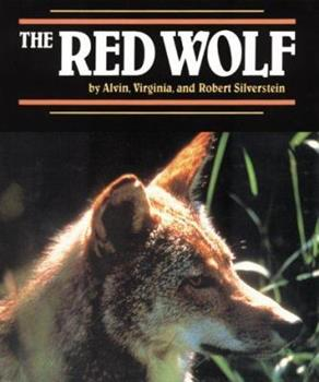 Red Wolf, The (Endangered in America) 1562944169 Book Cover