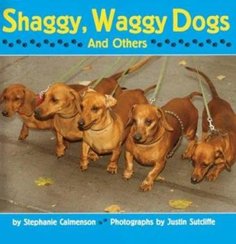 Paperback Shaggy, Waggy Dogs (And Others) Book