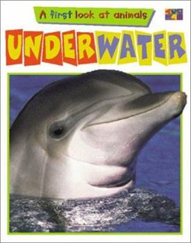 A First Look at Animals: Underwater 1587288613 Book Cover