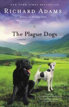 Paperback The Plague Dogs: A Novel Book