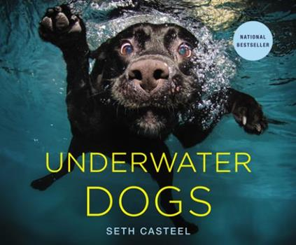 Underwater Dogs 0316227706 Book Cover