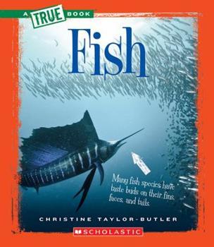 Hardcover Fish (a True Book: Animal Kingdom) (Library Edition) Book