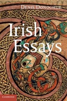 Irish Essays 1107006902 Book Cover