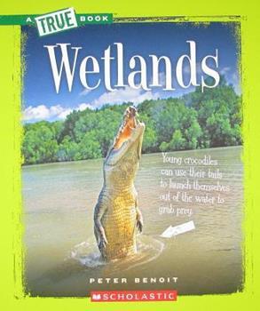 Paperback Wetlands Book