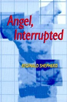 Angel, Interrupted (Pitt Poetry Series) 0822956144 Book Cover