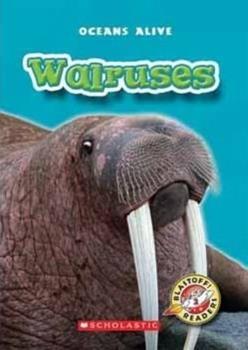 Library Binding Walruses (Blastoff! Readers; Oceans Alive) Book