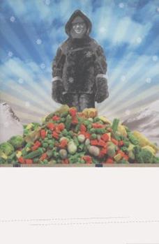 Birdseye: The Adventures of a Curious Man 0385527055 Book Cover