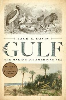 The Gulf: The Making of An American Sea