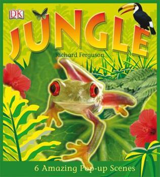 Jungle 0756633648 Book Cover