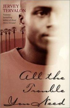 All the Trouble You Need : A Novel 0743422392 Book Cover