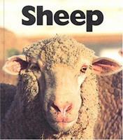 Sheep (Naturebooks: Farm Animals) 1567663796 Book Cover