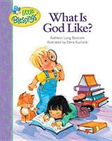 What Is God Like? (Little Blessings) 0842351183 Book Cover
