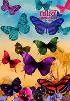 Collect Memories - A Daily Gratitude Journal Planner 1533257574 Book Cover