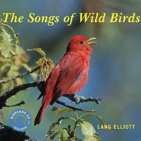 The Songs of Wild Birds 0618663983 Book Cover